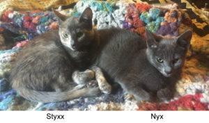 Styxx_Nyx_1