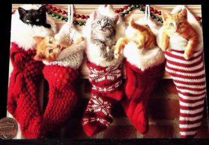 Christmas_kittens